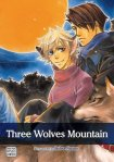 Three Wolves Mountain by Naono Bohra
