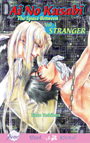 one of the most famous yaoi light novels translated into English: Ai no Kusabi by Rieko Yoshihara