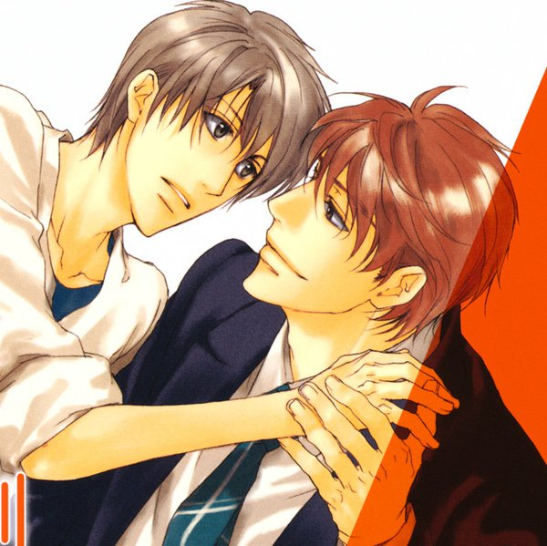 buying yaoi… why and where? | the joy of yaoi