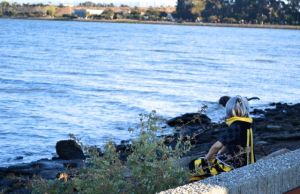 cosplayer enjoys the view of the San Francisco Bay